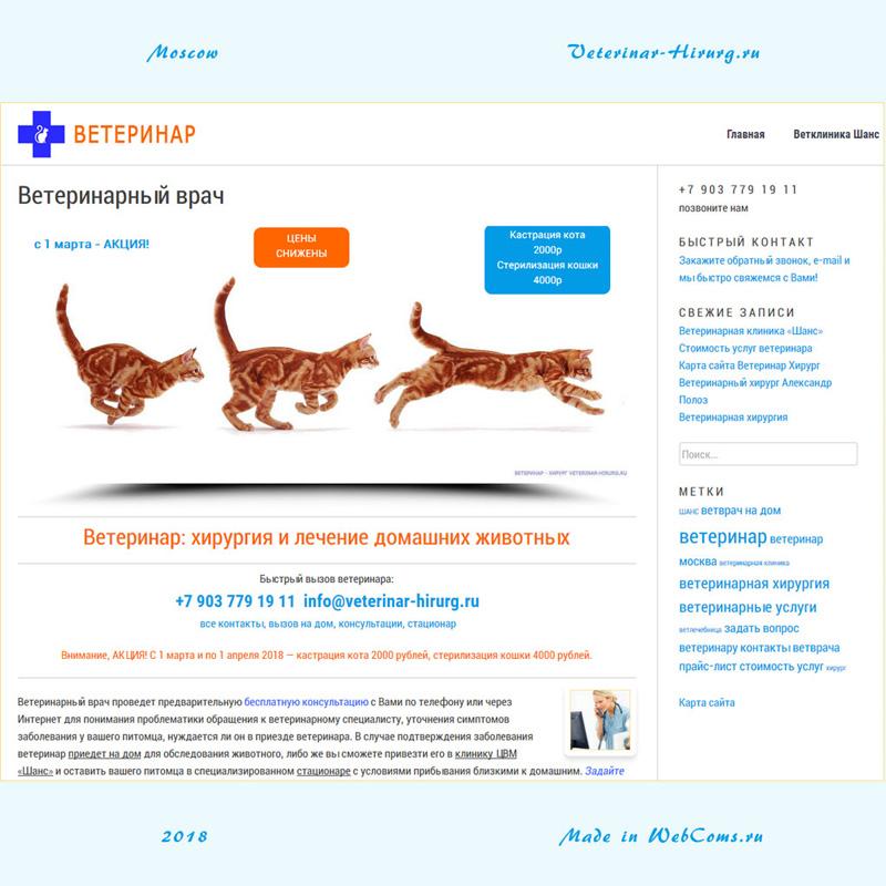 """сайт """"Ветеринар - Хирург"""" Veterinar-Hirurg.ru"""